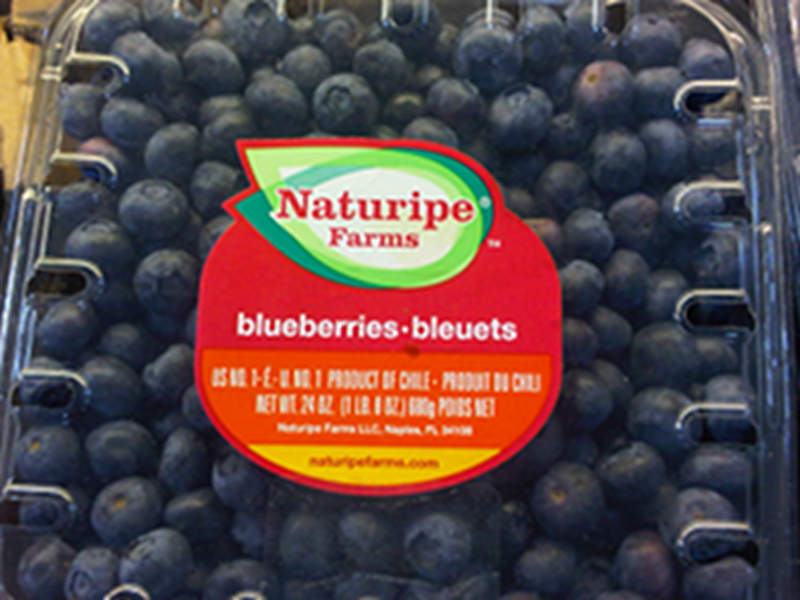 Blueberries from Chile