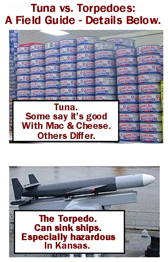 Tuna vs. Torpedoes