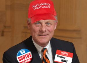 burr-hat