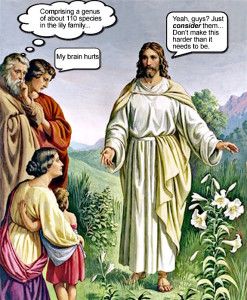 Cartoon-Jesus-consider-the-lilies