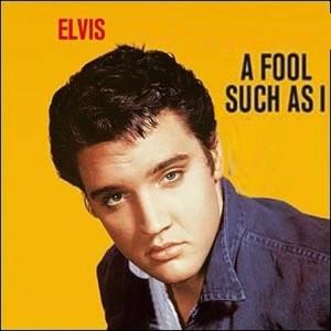 Fool-1-Elvis