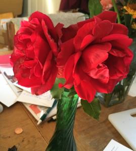 ms-hazels-roses-11-09-2016
