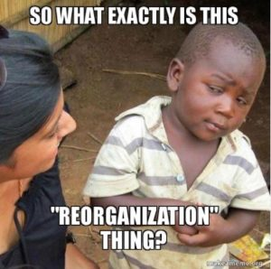 Skeptical-Reorganization