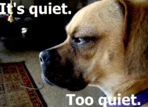 too-quiet