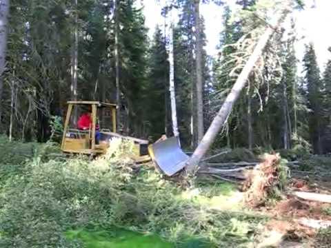 bulldozer-vs-tree
